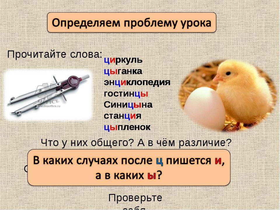 Прочитайте слова: циркуль цыганка энциклопедия гостинцы Синицына станция цыпл...