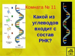 Комната № 11 Какой из углеводов входит с состав РНК?
