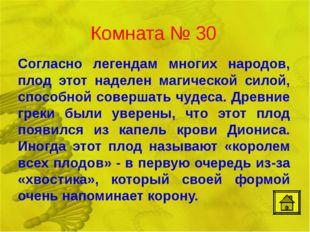 Комната № 30 Согласно легендам многих народов, плод этот наделен магической с
