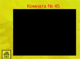 Комната № 45