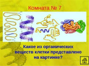 Комната № 7 Какое из органических веществ клетки представлено на картинке?