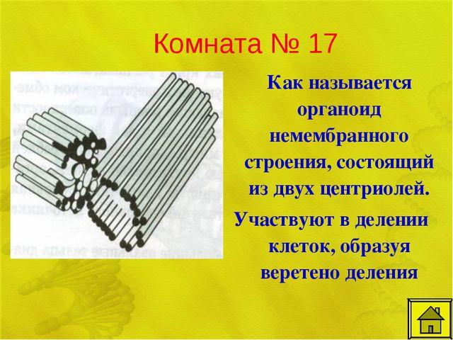 Комната № 17 Как называется органоид немембранного строения, состоящий из дв...