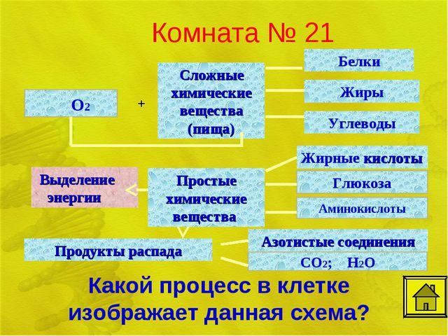 Комната № 21 О2 Какой процесс в клетке изображает данная схема?