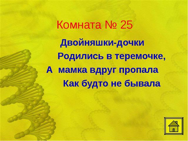 Комната № 25 Двойняшки-дочки Родились в теремочке, А мамка вдруг пропала К...