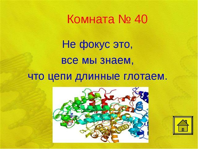 Комната № 40 Не фокус это, все мы знаем, что цепи длинные глотаем.