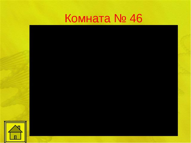 Комната № 46