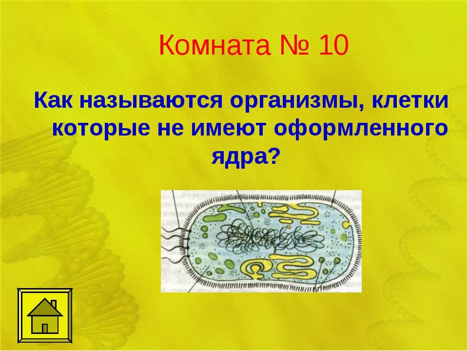 Комната № 10 Как называются организмы, клетки которые не имеют оформленного я...