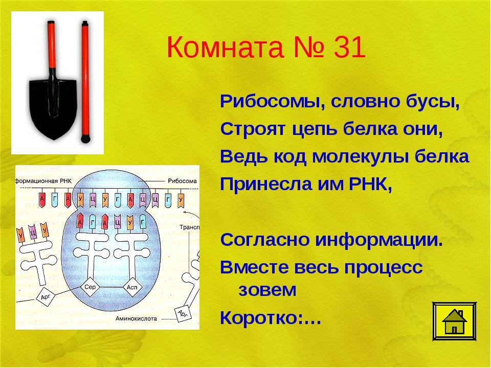 Комната № 31 Рибосомы, словно бусы, Строят цепь белкa они, Ведь код молекулы...