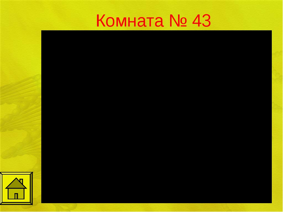 Комната № 43