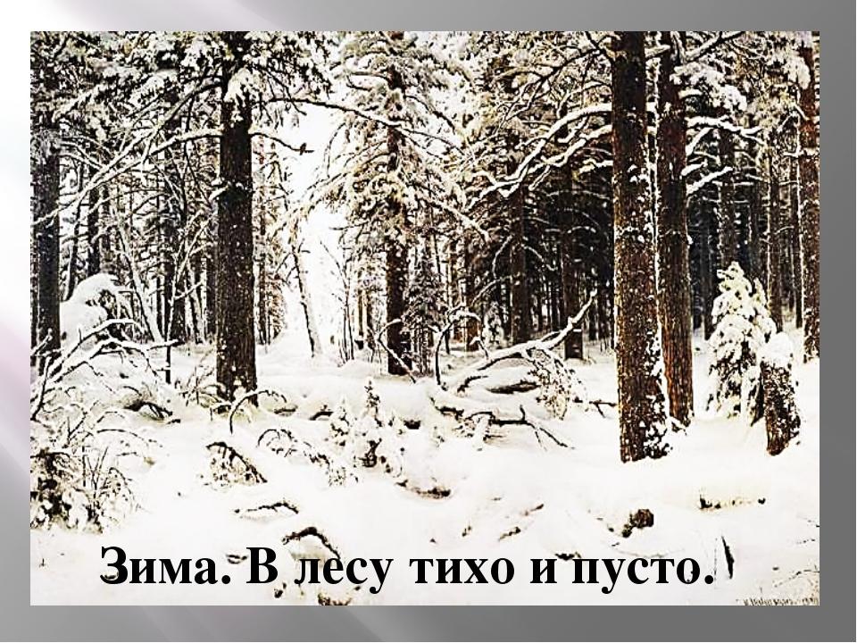 Зима. В лесу тихо и пусто.