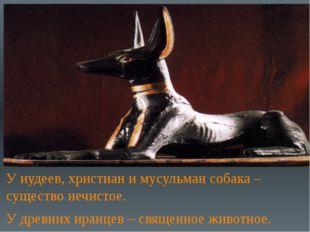 У иудеев, христиан и мусульман собака – существо нечистое. У древних иранцев