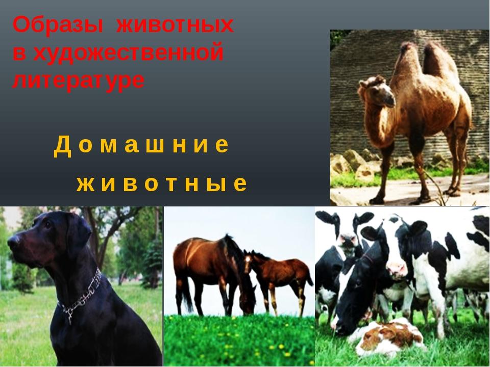 Образы животных в художественной литературе Д о м а ш н и е ж и в о т н ы е
