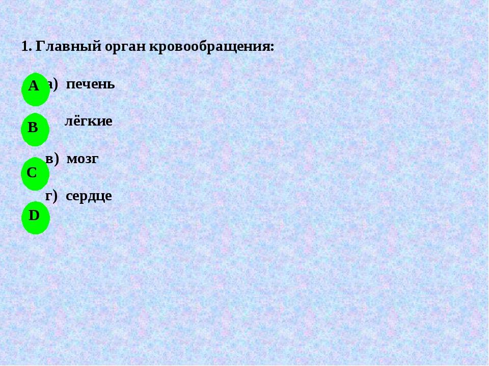 1. Главный орган кровообращения: а) печень лёгкие в) мозг г) сердце