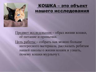 Предмет исследования – образ жизни кошки, её питание и привычки. Цель работы