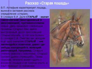 Рассказ «Старая лошадь» В.П. Астафьев характеризует лошадь, вынося в заглави