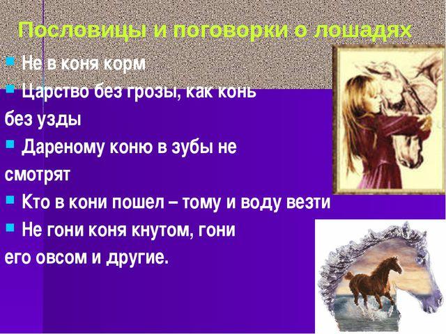Не в коня корм Царство без грозы, как конь без узды Дареному коню в зубы не с...