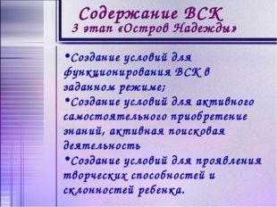 Создание условий для функционирования ВСК в заданном режиме; Создание условий