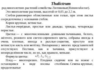 Васили́стник Thalictrum родмноголетних растенийсемействаЛютиковые(Ranuncu