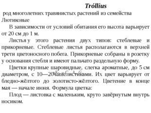Купа́льница Tróllius родмноголетнихтравянистыхрастенийизсемейства Лют