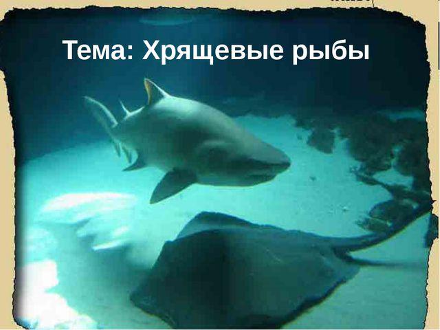 Тема: Хрящевые рыбы