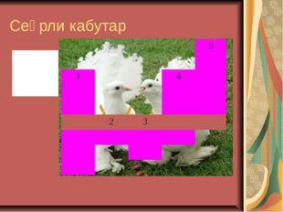 Сеҳрли кабутар 1-одобли 2-қора 3-шўх 4-иссиқ 5-ювош 5  14