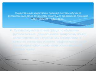Организацию языковой среды по обучению русскоязычных дошкольников татарскому