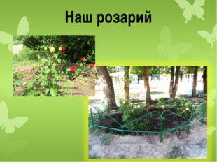 Наш розарий