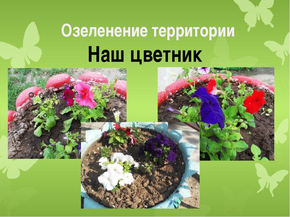 Наш цветник Озеленение территории