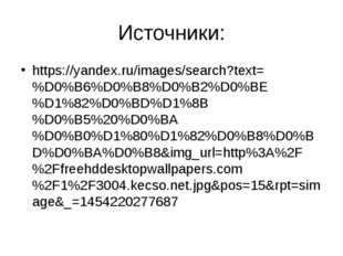 Источники: https://yandex.ru/images/search?text=%D0%B6%D0%B8%D0%B2%D0%BE%D1%8