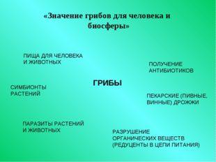 «Значение грибов для человека и биосферы» ГРИБЫ ПИЩА ДЛЯ ЧЕЛОВЕКА И ЖИВОТНЫХ