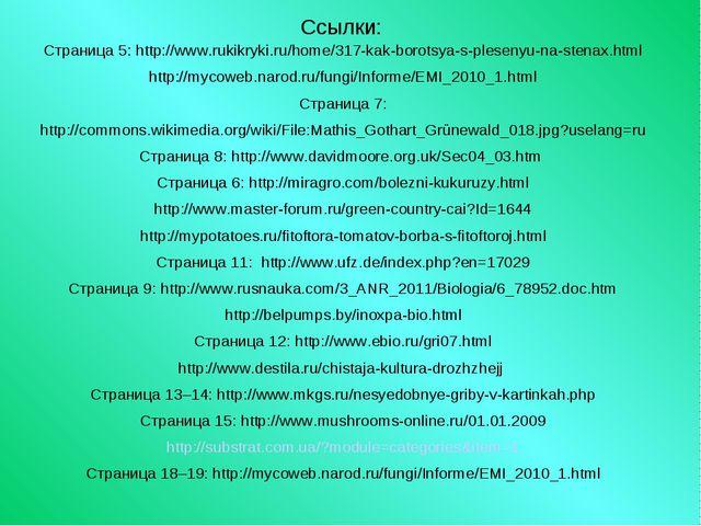 Ссылки: Страница 5: http://www.rukikryki.ru/home/317-kak-borotsya-s-plesenyu-...