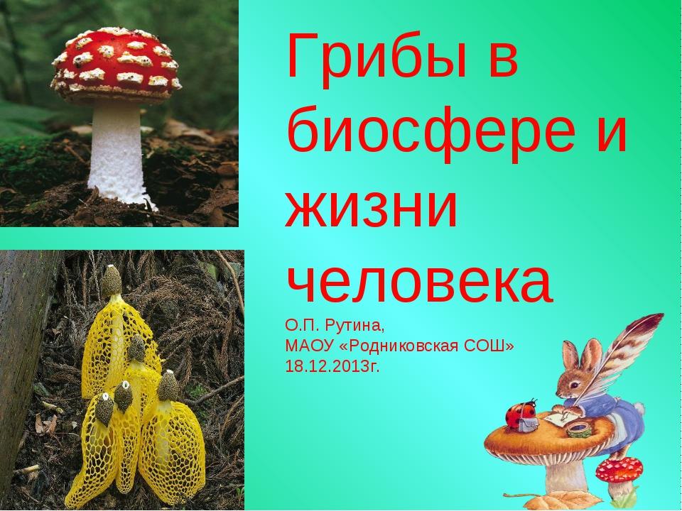 Грибы в биосфере и жизни человека О.П. Рутина, МАОУ «Родниковская СОШ» 18.12....