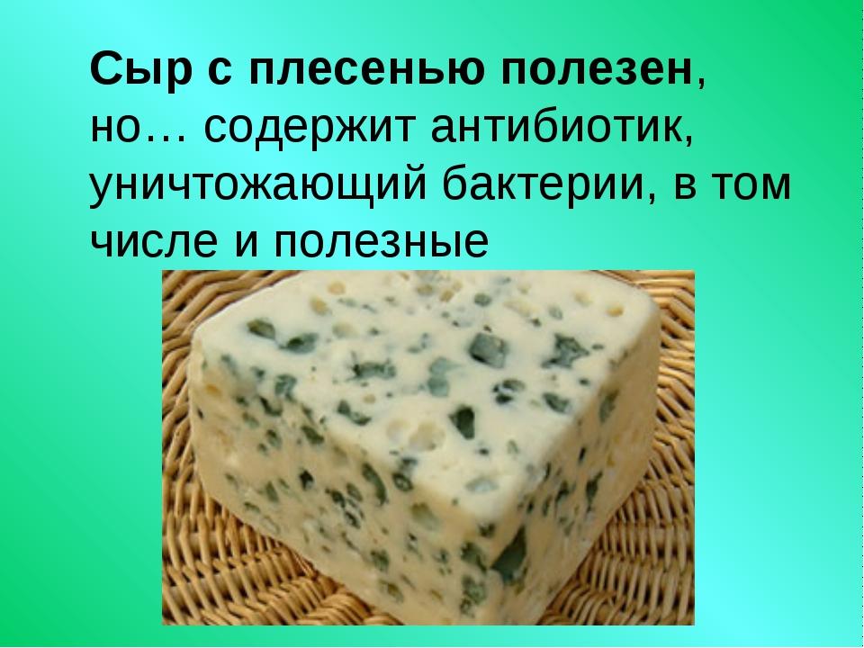 Сыр с плесенью полезен, но… содержит антибиотик, уничтожающий бактерии, в том...