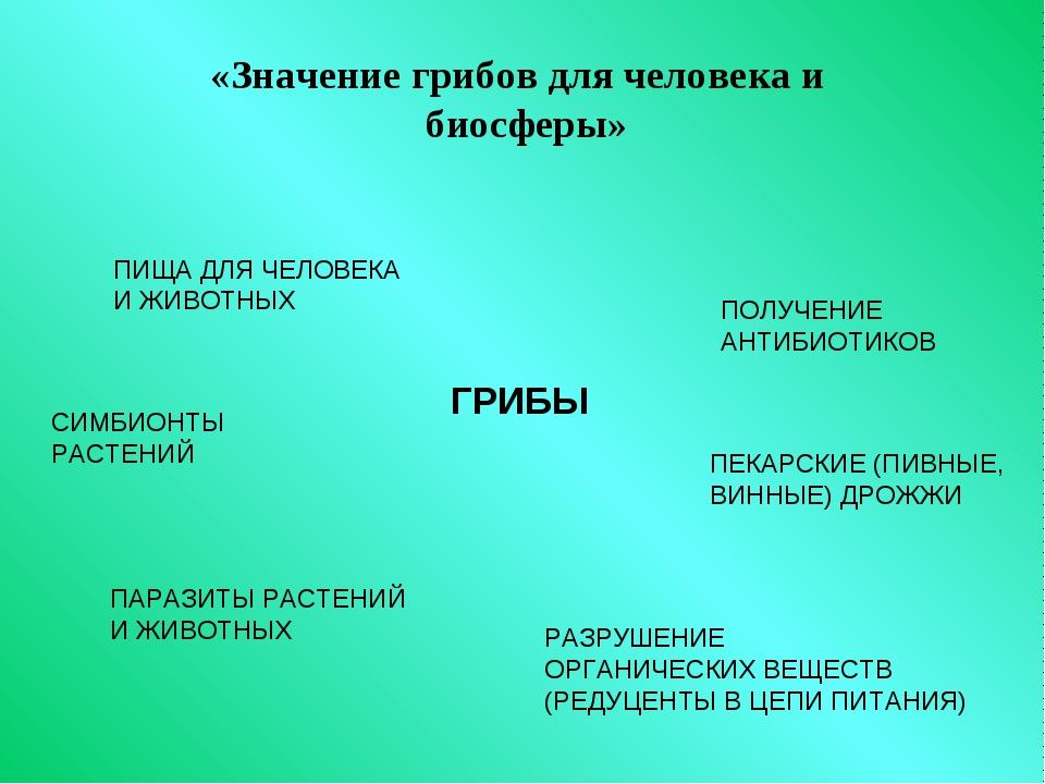 «Значение грибов для человека и биосферы» ГРИБЫ ПИЩА ДЛЯ ЧЕЛОВЕКА И ЖИВОТНЫХ...