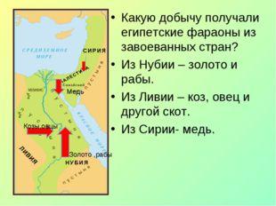 Какую добычу получали египетские фараоны из завоеванных стран? Из Нубии – зол