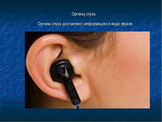 Органы слуха Органы слуха доставляют информацию в виде звуков