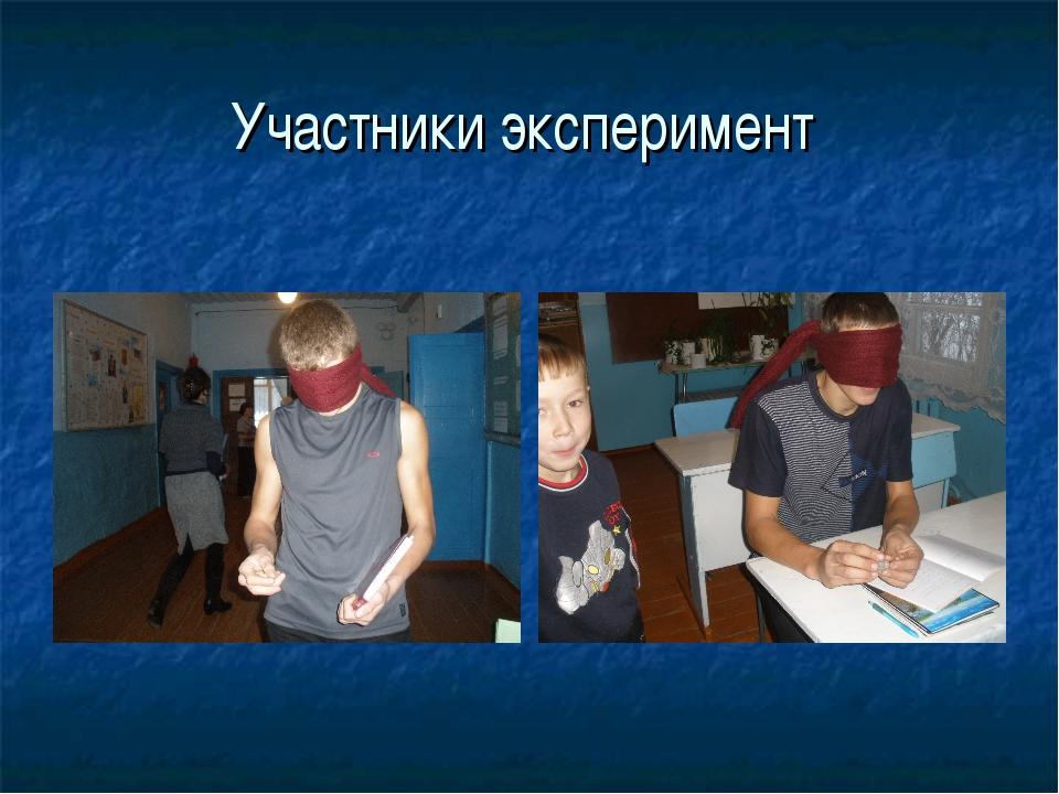 Участники эксперимент