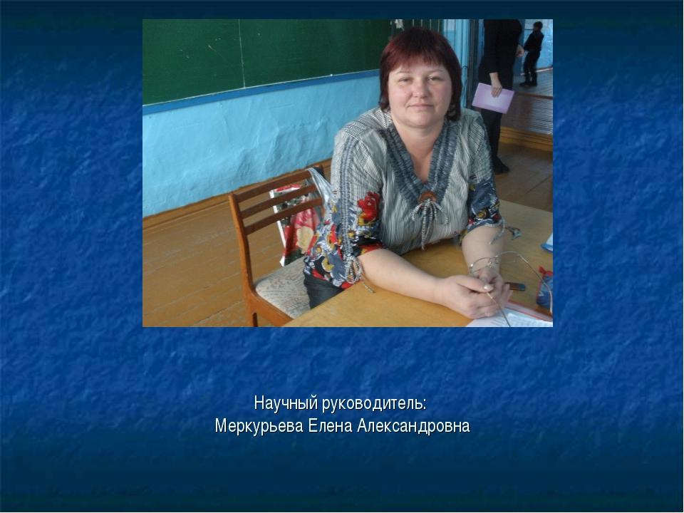 Научный руководитель: Меркурьева Елена Александровна