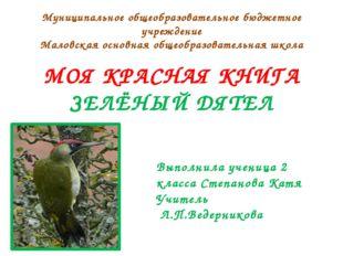 Среднего размера дятел. Длина 33—36см, размах крыльев 40—44см, вес 150—250