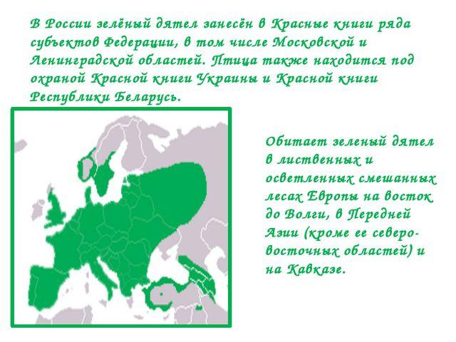 Обитает зеленый дятел в лиственных и осветленных смешанных лесах Европы на во...