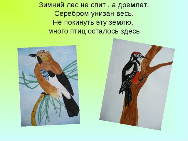Зимний лес не спит , а дремлет. Серебром унизан весь. Не покинуть эту землю,...