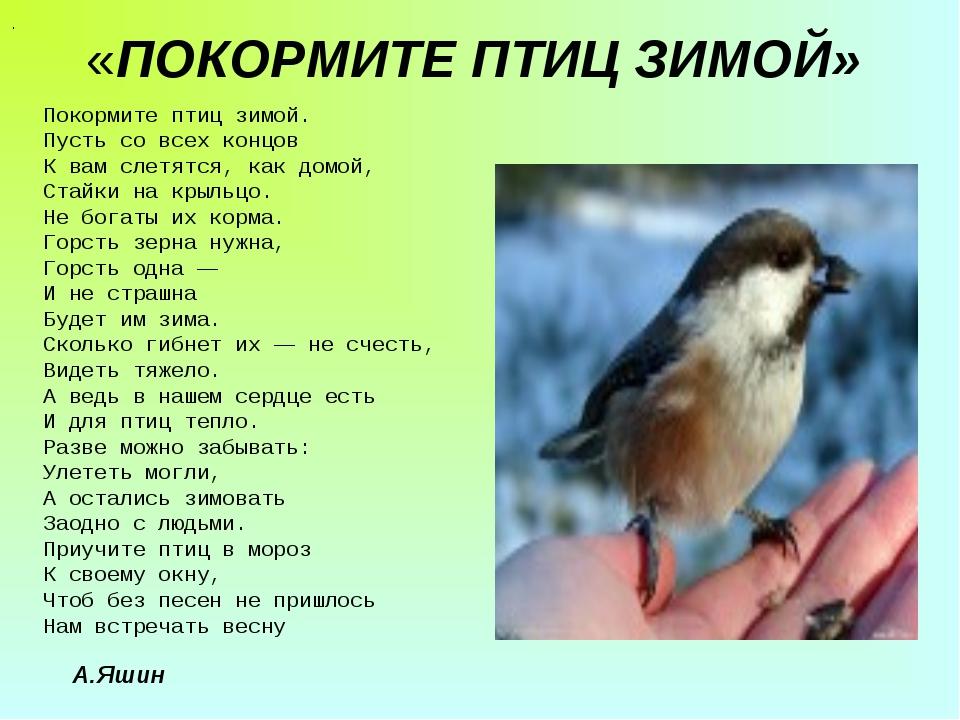 «ПОКОРМИТЕ ПТИЦ ЗИМОЙ» . Покормите птиц зимой. Пусть со всех концов К вам сле...