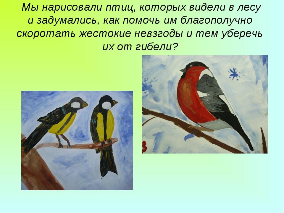 Мы нарисовали птиц, которых видели в лесу и задумались, как помочь им благоп...