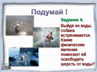 Задание 4. Выйдя из воды, собака встряхивается. Какие физические явления пом