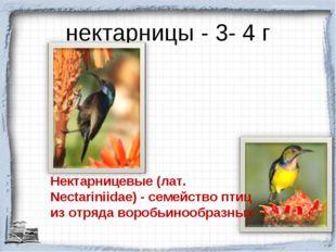 нектарницы - 3- 4 г Нектарницевые (лат. Nectariniidae) - семейство птиц из от