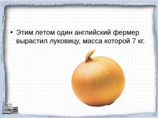 Этим летом один английский фермер вырастил луковицу, масса которой 7 кг.