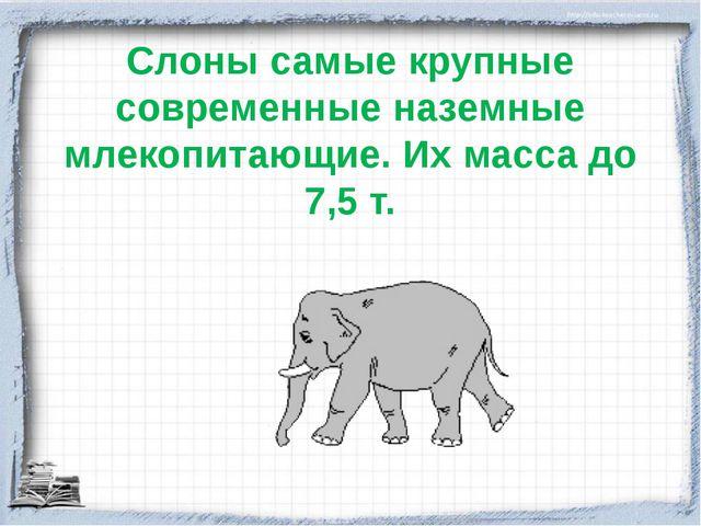 Слоны самые крупные современные наземные млекопитающие. Их масса до 7,5 т.