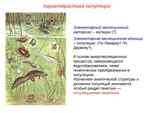 Элементарный эволюционный материал – мутации (?). Элементарная эволюционная е...