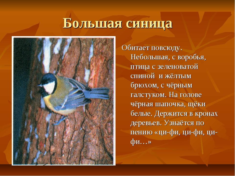 Большая синица Обитает повсюду. Небольшая, с воробья, птица с зеленоватой спи...