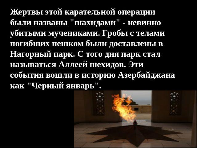 """Жертвы этой карательной операции были названы """"шахидами"""" - невинно убитыми му..."""
